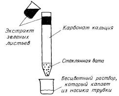 Хроматографическая колонка Цвета
