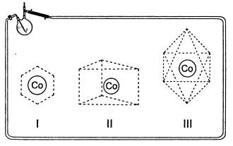 симметричные структуры