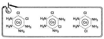 три изомера